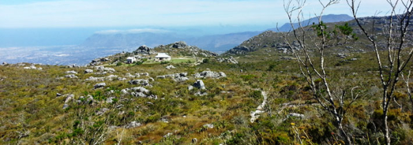 Table-Mountain-Guide