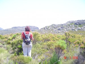 Hike from Cape Point to Table Mountain
