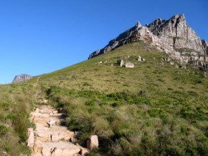 The final part of the contour path leads down to Tafelberg Rd