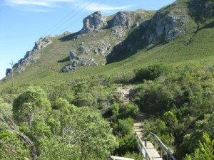 Hiking in the western cape